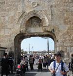 Навозные ворота